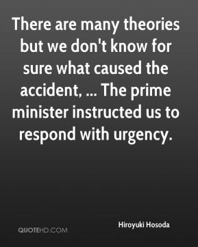 Hiroyuki Hosoda - There are many theories but we don't know for sure what caused the accident, ... The prime minister instructed us to respond with urgency.