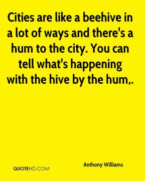 Cities are like a beehive in a lot of ways and there's a hum to the city. You can tell what's happening with the hive by the hum.