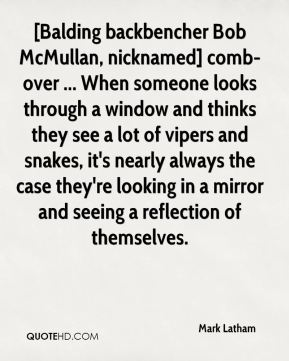 [Balding backbencher Bob McMullan, nicknamed] comb-over ... When someone looks through a window and thinks they see a lot of vipers and snakes, it's nearly always the case they're looking in a mirror and seeing a reflection of themselves.