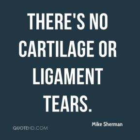 There's no cartilage or ligament tears.