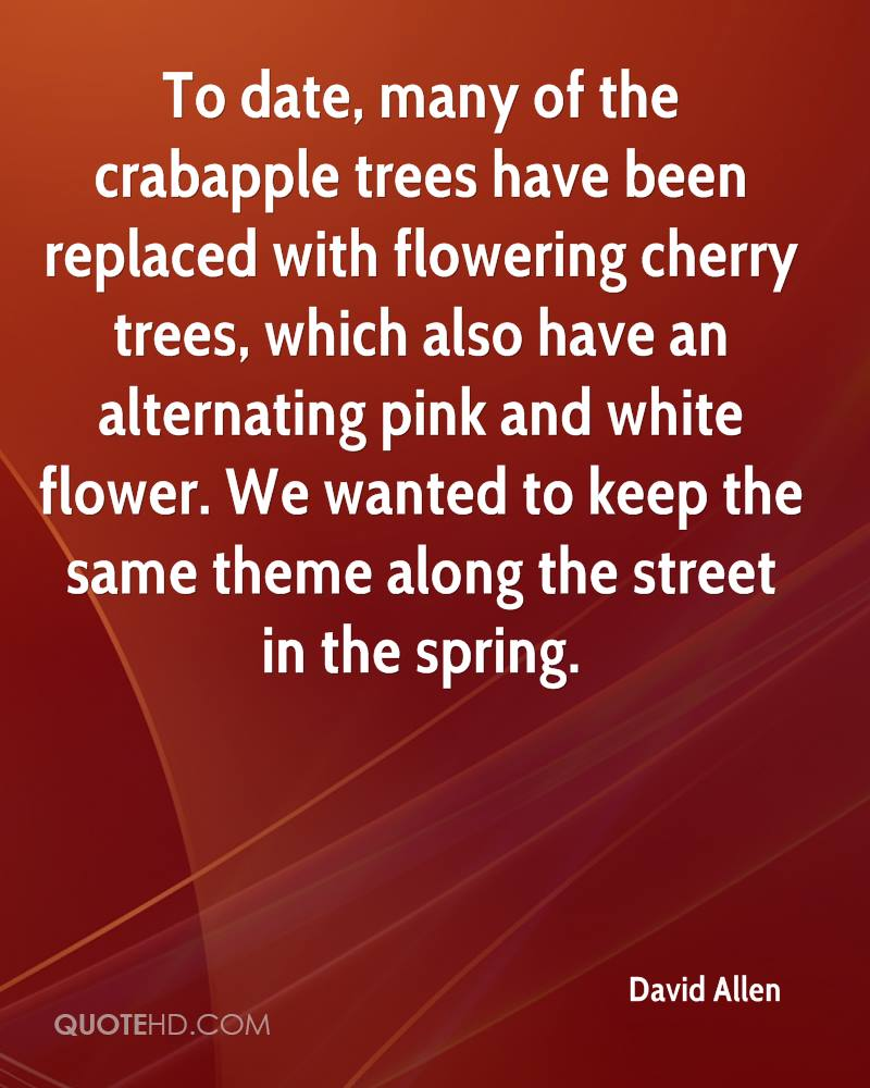 To date, many of the crabapple trees have been replaced with flowering cherry trees, which also have an alternating pink and white flower. We wanted to keep the same theme along the street in the spring.