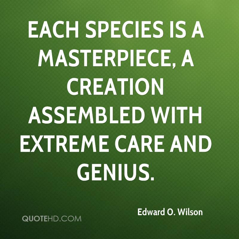 Each species is a masterpiece, a creation assembled with extreme care and genius.