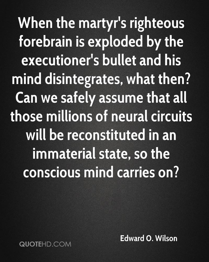 When the martyr's righteous forebrain is exploded by the executioner's bullet and his mind disintegrates, what then? Can we safely assume that all those millions of neural circuits will be reconstituted in an immaterial state, so the conscious mind carries on?