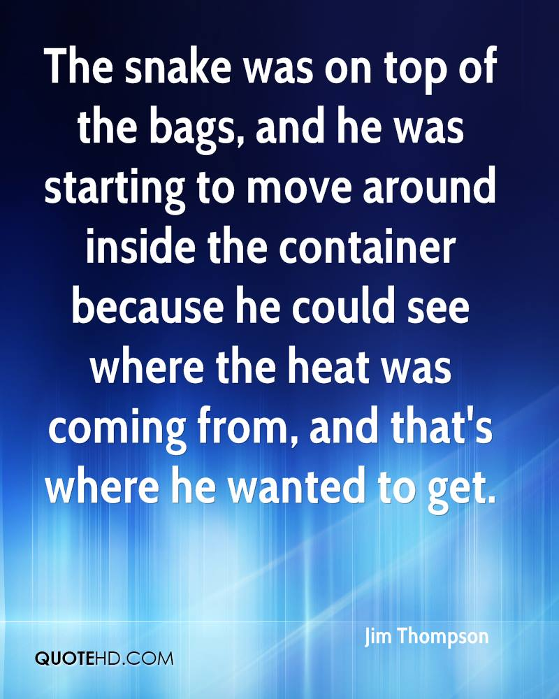 The snake was on top of the bags, and he was starting to move around inside the container because he could see where the heat was coming from, and that's where he wanted to get.
