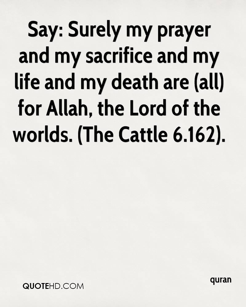 Life Sacrifice Quotes Quran Death Quotes  Quotehd