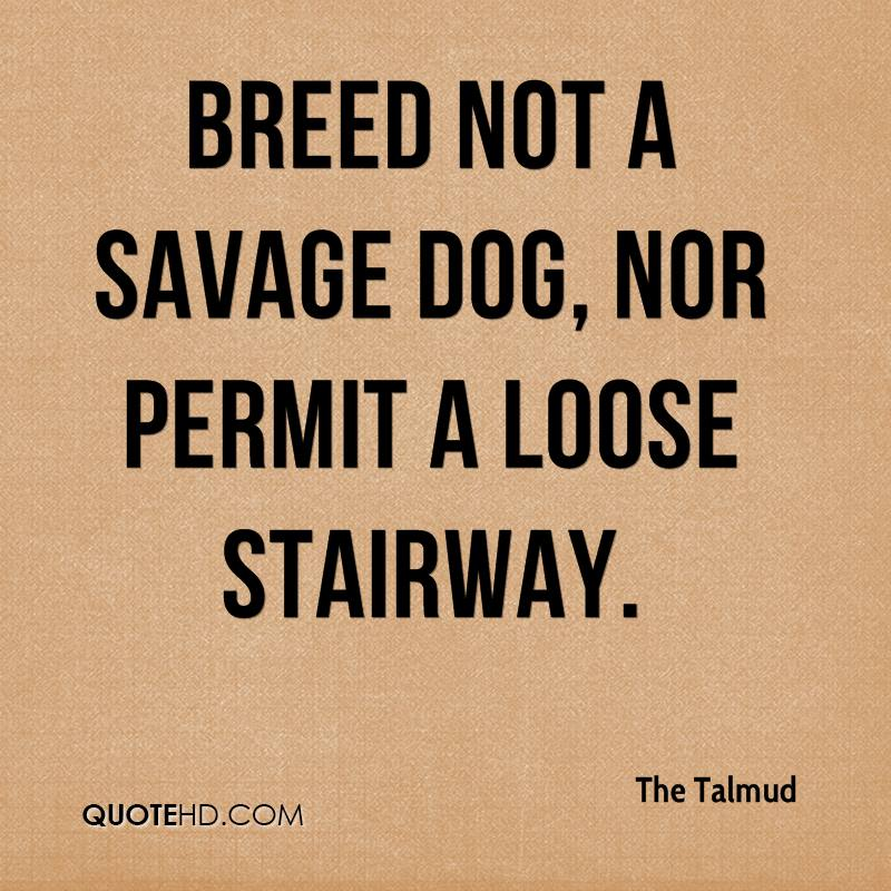 Breed not a savage dog, nor permit a loose stairway.