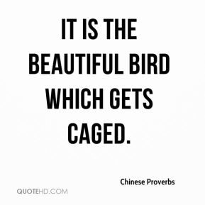 It is the beautiful bird which gets caged.