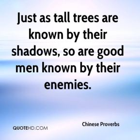 Just as tall trees are known by their shadows, so are good men known by their enemies.