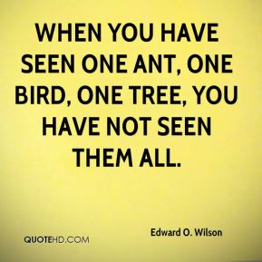 Edward O. Wilson - When you have seen one ant, one bird, one tree, you have not seen them all.