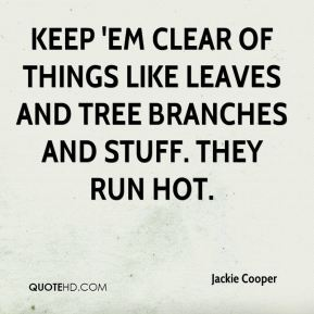 Jackie Cooper - Keep 'em clear of things like leaves and tree branches and stuff. They run hot.