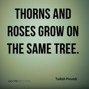 Turkish Proverb  - Thorns and roses grow on the same tree.