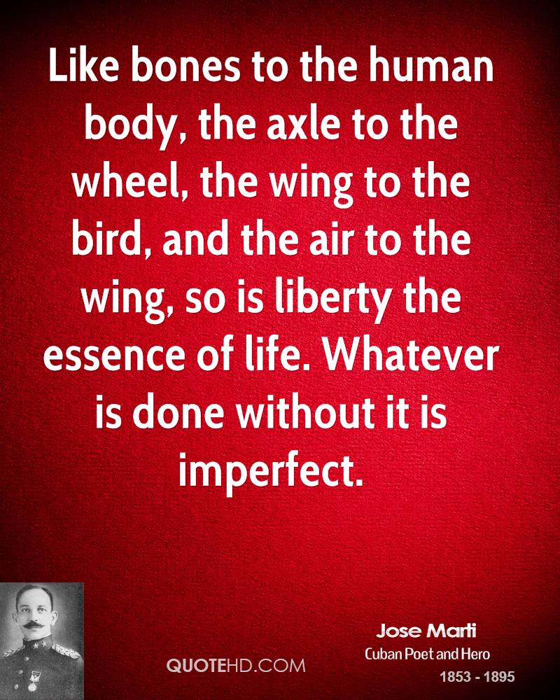 Like bones to the human body, the axle to the wheel, the wing to the bird, and the air to the wing, so is liberty the essence of life. Whatever is done without it is imperfect.