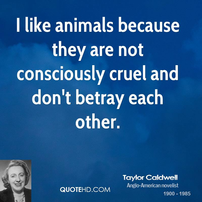 I like animals because they are not consciously cruel and don't betray each other.
