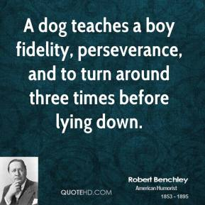 Robert Benchley - A dog teaches a boy fidelity, perseverance, and to turn around three times before lying down.