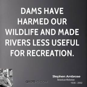 Stephen Ambrose - Dams have harmed our wildlife and made rivers less useful for recreation.