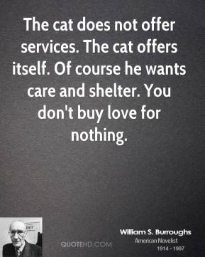 William S. Burroughs - The cat does not offer services. The cat offers itself. Of course he wants care and shelter. You don't buy love for nothing.