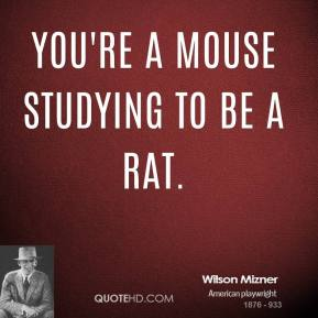 Wilson Mizner  - You're a mouse studying to be a rat.