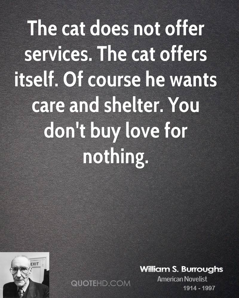 The cat does not offer services. The cat offers itself. Of course he wants care and shelter. You don't buy love for nothing.