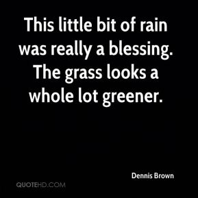 This little bit of rain was really a blessing. The grass looks a whole lot greener.