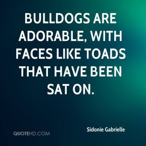 Bulldogs are adorable, with faces like toads that have been sat on.