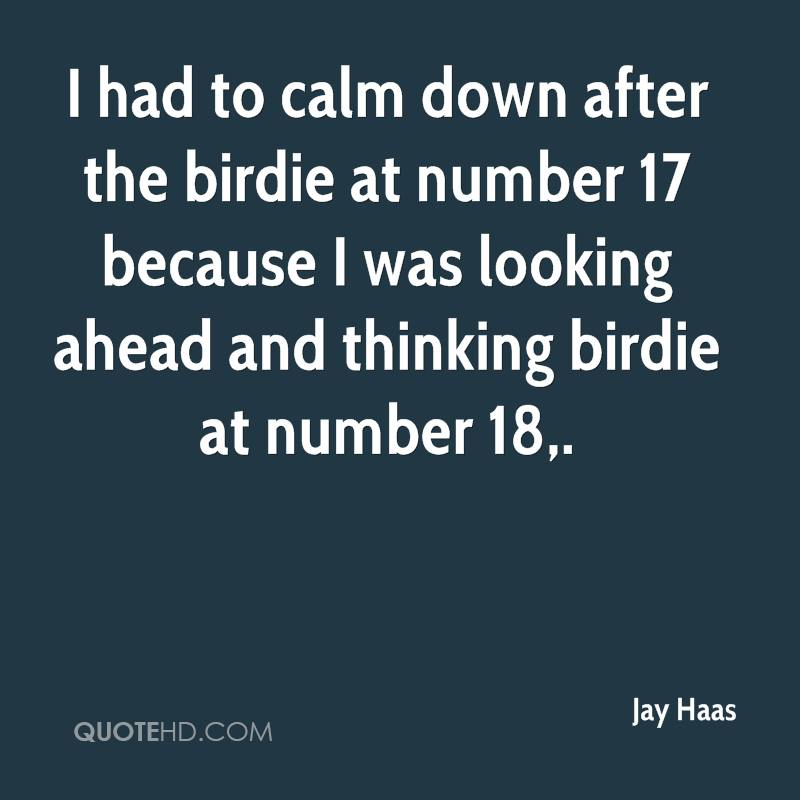 I had to calm down after the birdie at number 17 because I was looking ahead and thinking birdie at number 18.