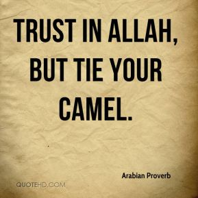 Trust in Allah, but tie your camel.