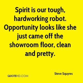 Steve Squyres  - Spirit is our tough, hardworking robot. Opportunity looks like she just came off the showroom floor, clean and pretty.