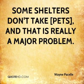 some shelters don't take [pets], and that is really a major problem.