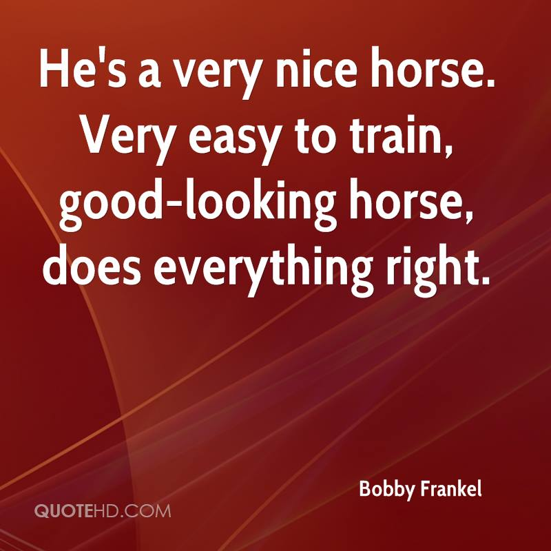 He's a very nice horse. Very easy to train, good-looking horse, does everything right.