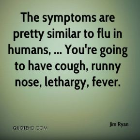 Jim Ryan  - The symptoms are pretty similar to flu in humans, ... You're going to have cough, runny nose, lethargy, fever.