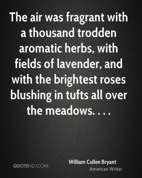 The air was fragrant with a thousand trodden aromatic herbs, with fields of lavender, and with the brightest roses blushing in tufts all over the meadows. . . .