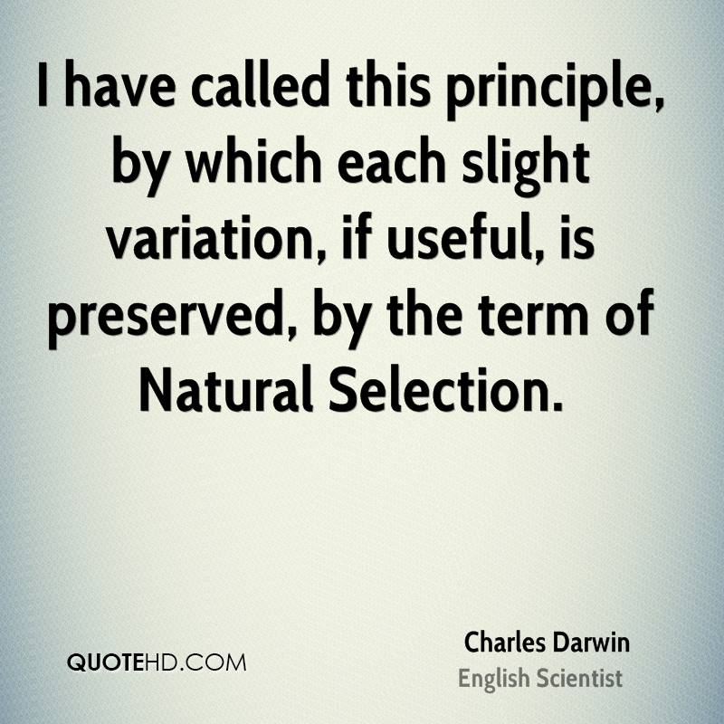 I have called this principle, by which each slight variation, if useful, is preserved, by the term of Natural Selection.