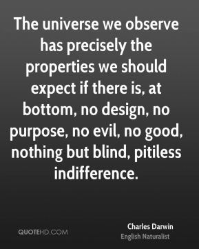 The universe we observe has precisely the properties we should expect if there is, at bottom, no design, no purpose, no evil, no good, nothing but blind, pitiless indifference.
