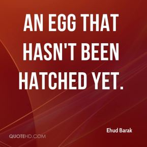 an egg that hasn't been hatched yet.