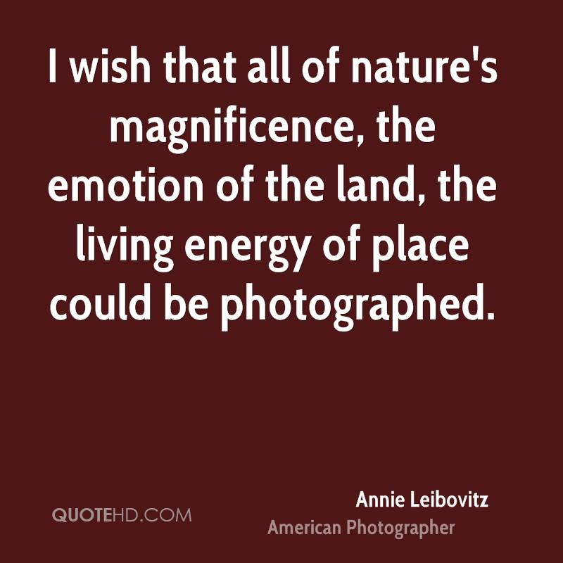 I wish that all of nature's magnificence, the emotion of the land, the living energy of place could be photographed.
