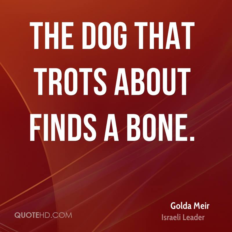 The dog that trots about finds a bone.