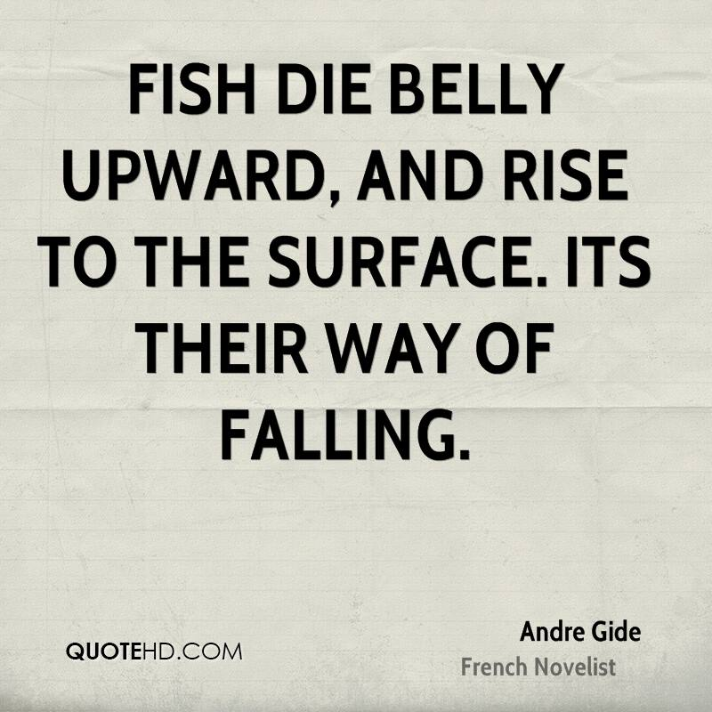 Fish die belly upward, and rise to the surface. Its their way of falling.