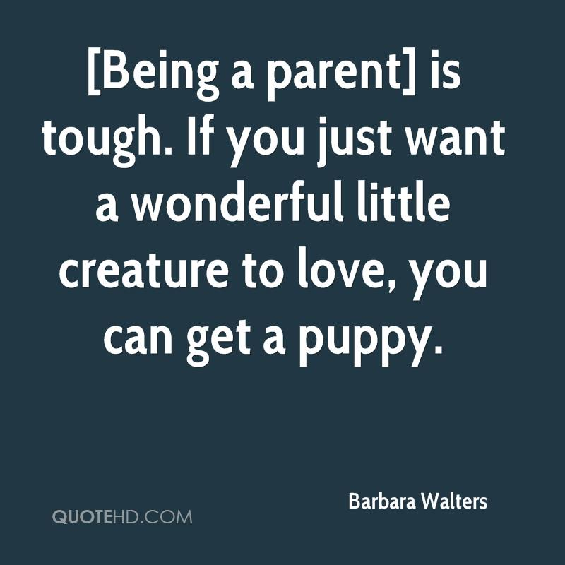 Barbara Walters Quotes   QuoteHD