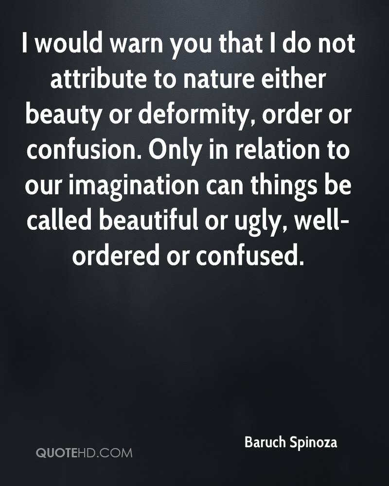 I would warn you that I do not attribute to nature either beauty or deformity, order or confusion. Only in relation to our imagination can things be called beautiful or ugly, well-ordered or confused.