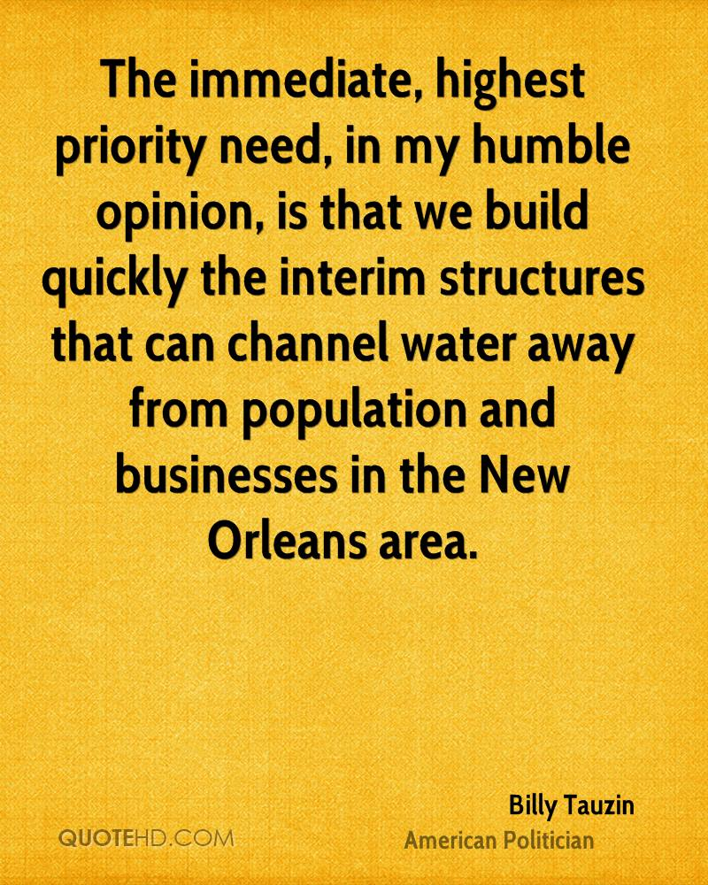 The immediate, highest priority need, in my humble opinion, is that we build quickly the interim structures that can channel water away from population and businesses in the New Orleans area.