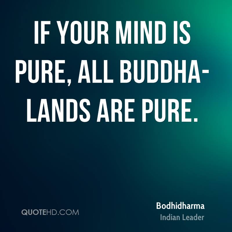 If your mind is pure, all buddha-lands are pure.