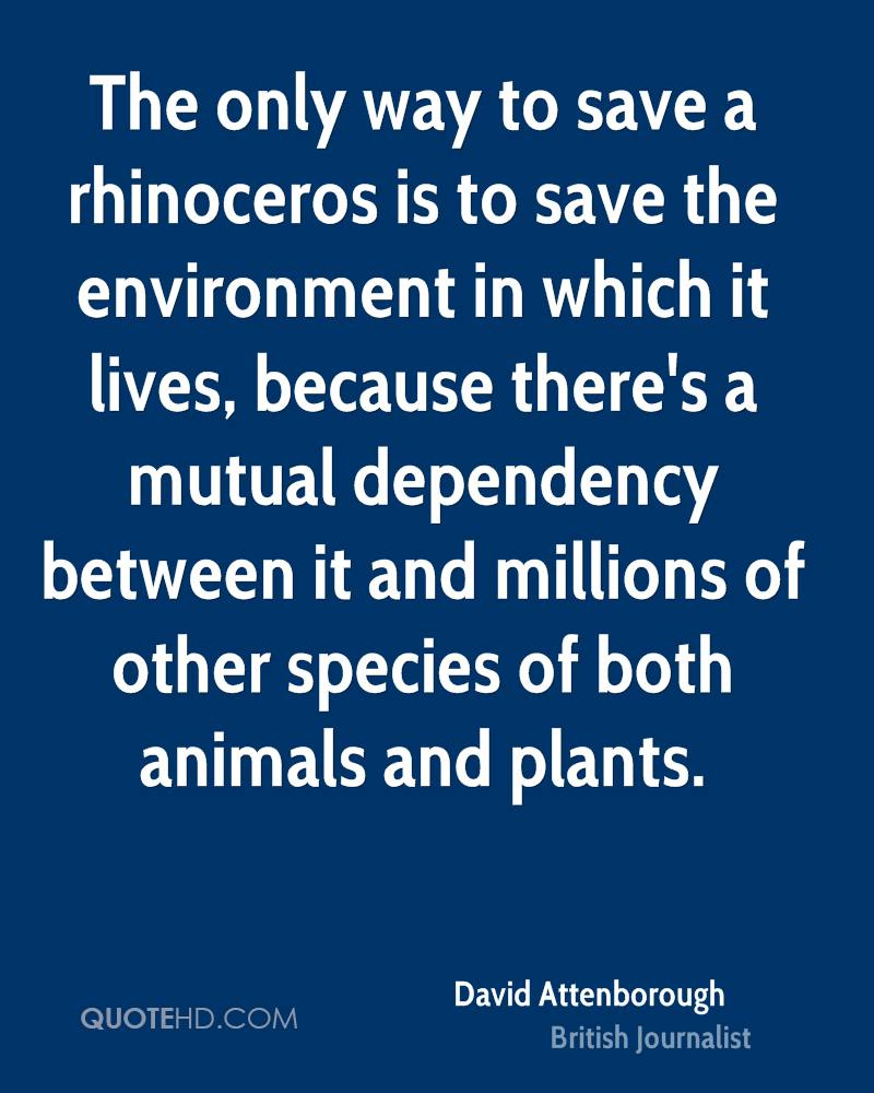 The only way to save a rhinoceros is to save the environment in which it lives, because there's a mutual dependency between it and millions of other species of both animals and plants.