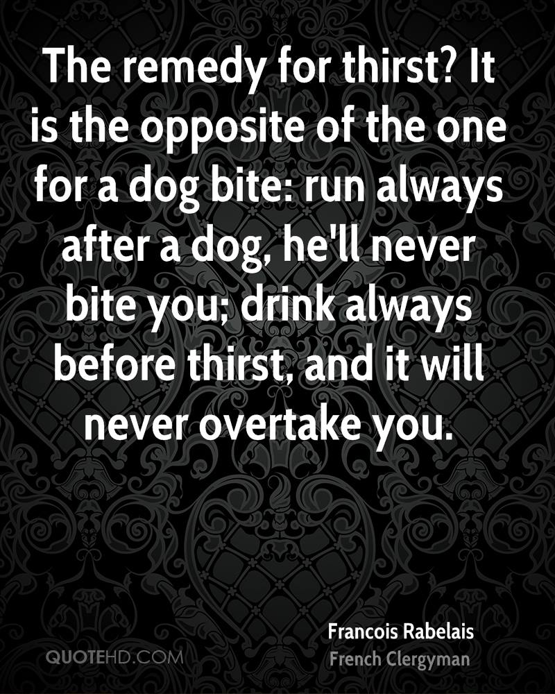 The remedy for thirst? It is the opposite of the one for a dog bite: run always after a dog, he'll never bite you; drink always before thirst, and it will never overtake you.