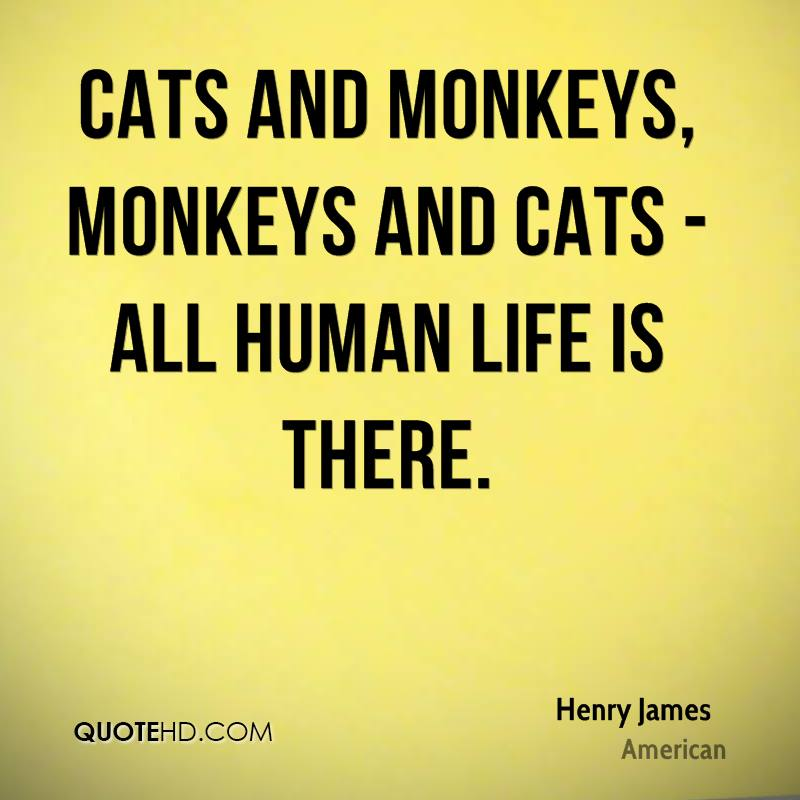 Cats and monkeys, monkeys and cats - all human life is there.