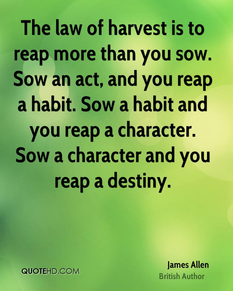 Reap What You Sow Quotes Entrancing 136 Reap Quotesquotesurf
