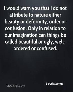 Baruch Spinoza - I would warn you that I do not attribute to nature either beauty or deformity, order or confusion. Only in relation to our imagination can things be called beautiful or ugly, well-ordered or confused.