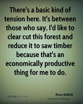 Bruce Babbitt - There's a basic kind of tension here. It's between those who say, I'd like to clear cut this forest and reduce it to saw timber because that's an economically productive thing for me to do.