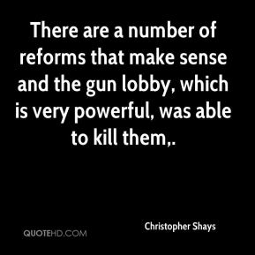 There are a number of reforms that make sense and the gun lobby, which is very powerful, was able to kill them.