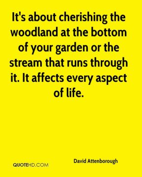 It's about cherishing the woodland at the bottom of your garden or the stream that runs through it. It affects every aspect of life.