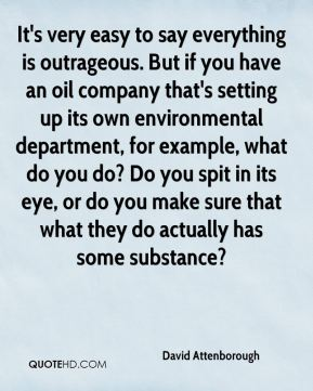 It's very easy to say everything is outrageous. But if you have an oil company that's setting up its own environmental department, for example, what do you do? Do you spit in its eye, or do you make sure that what they do actually has some substance?